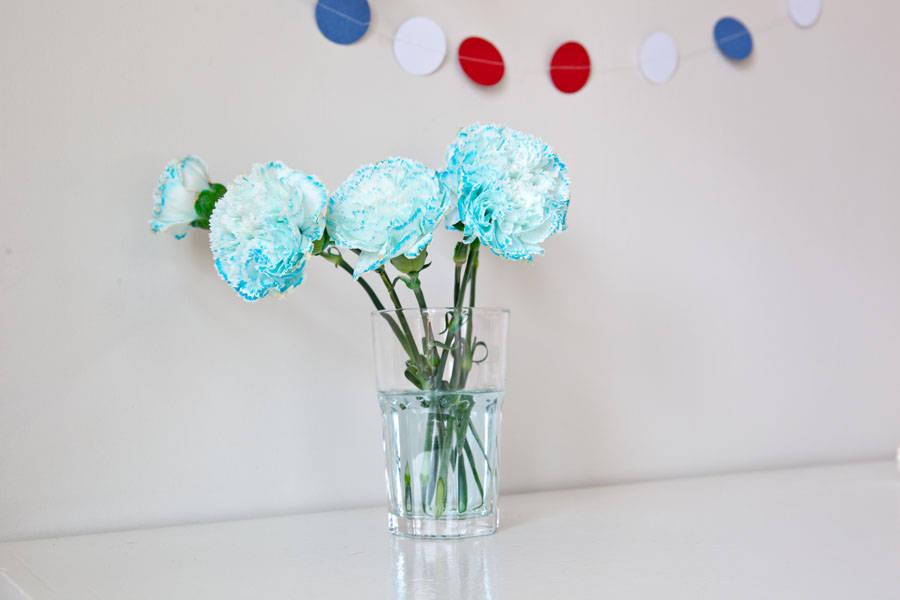 farge_blomster04