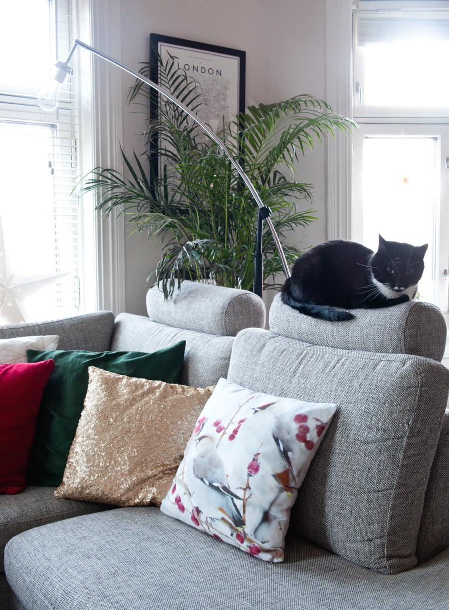 katt på sofa