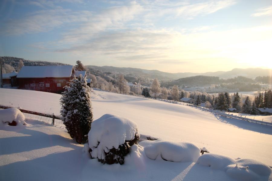 vinterlandskap i nordre oppdalen