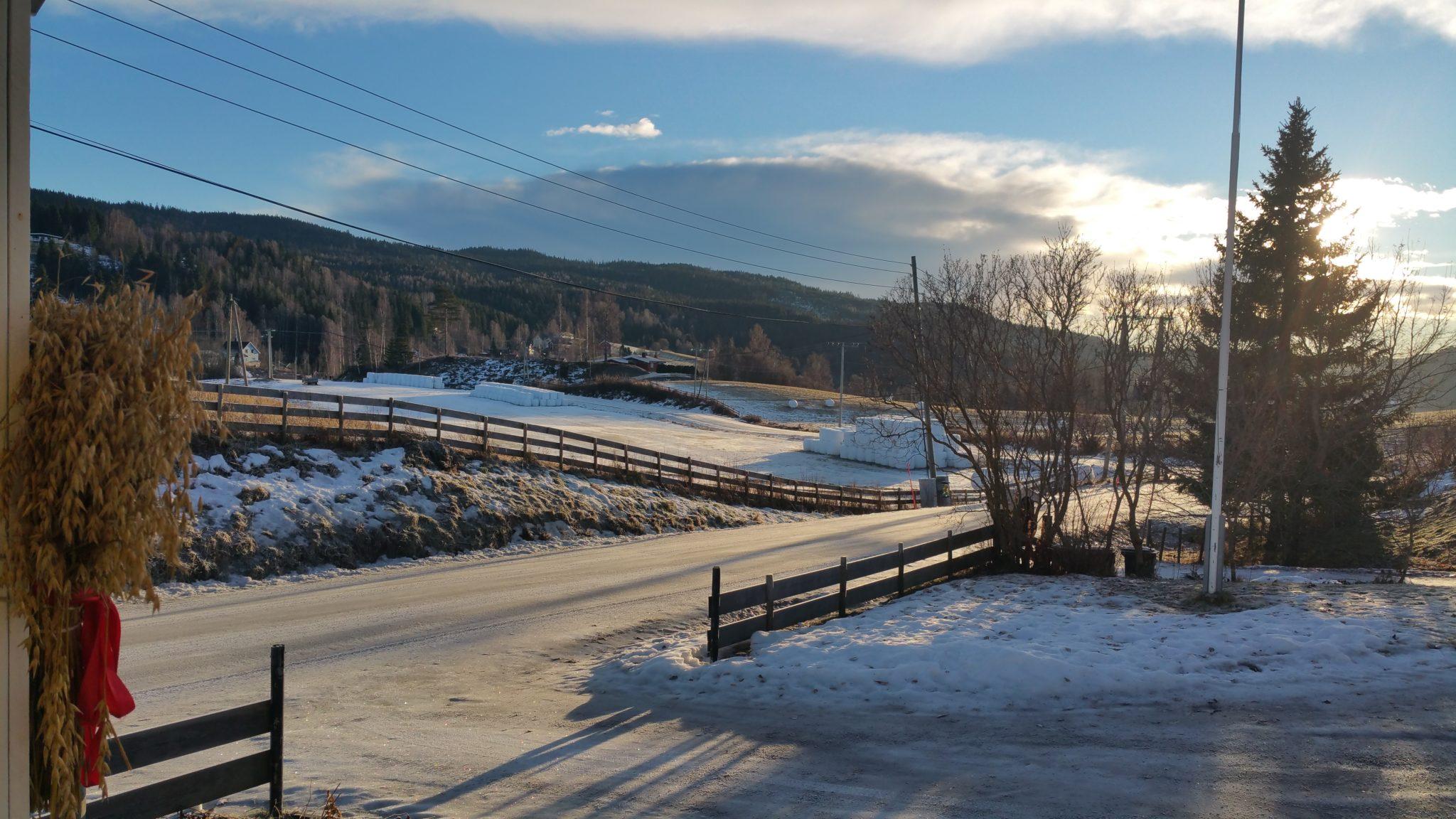 utsikt natur vinter