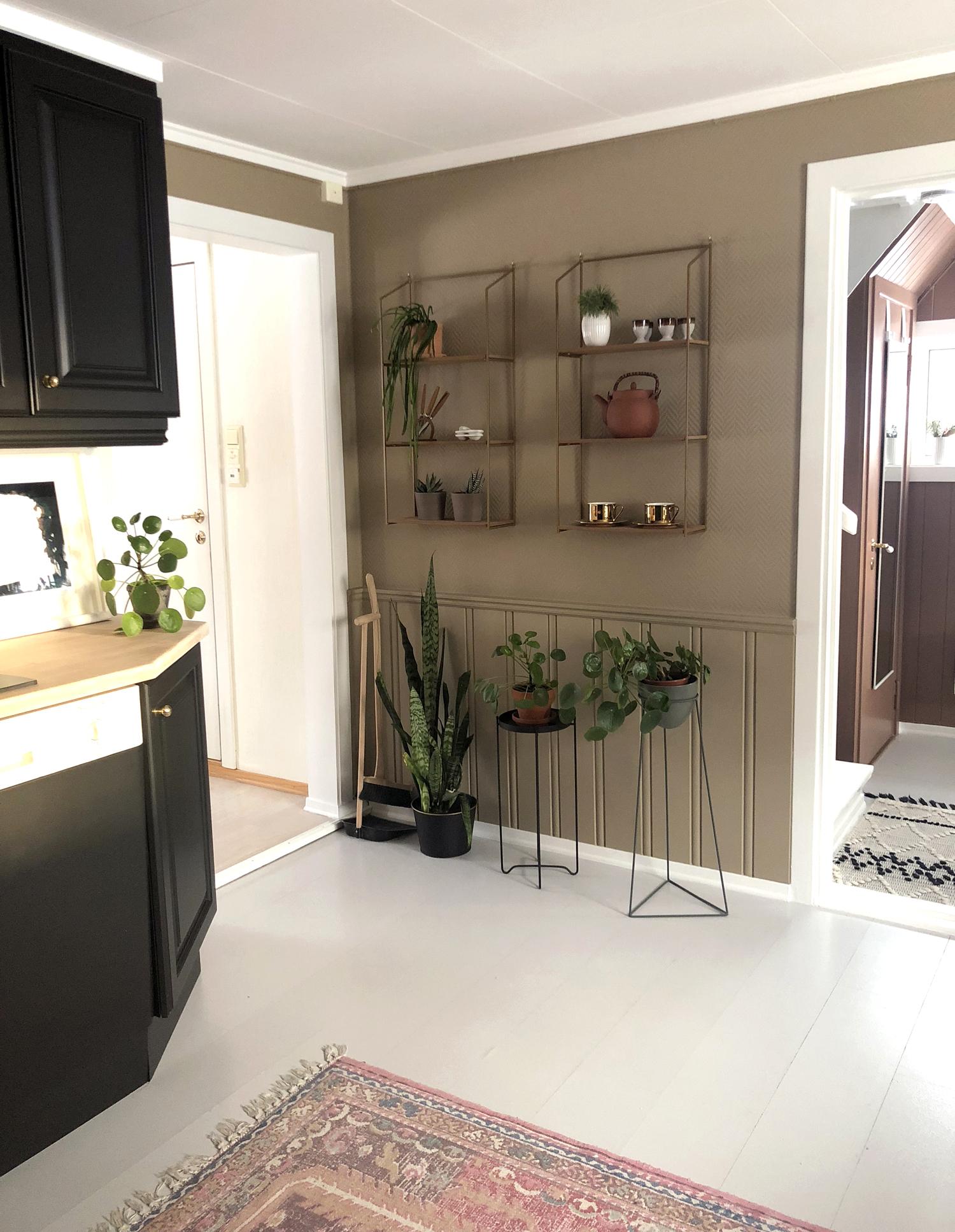 planter på kjøkkenet