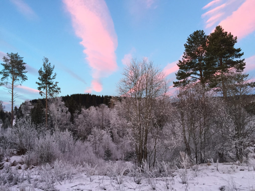 himmel solnedgang rosa blått
