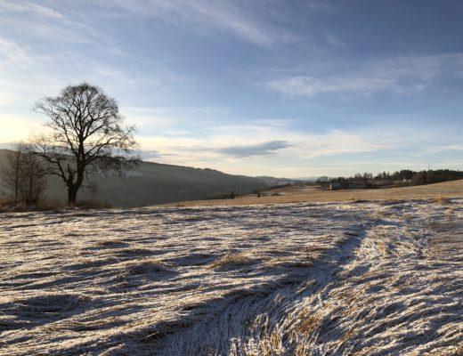 vinterlandskap åker hadeland